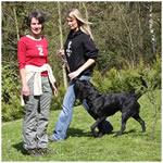 Leistungen der Hunde-Verhaltenstherapeutin Ina Stiefken in Hattingen